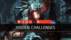 Evolve Hidden Challenges